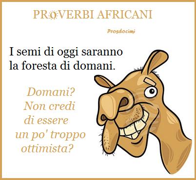 proverbio africano - ottimista usato ottobre