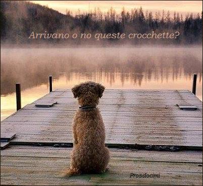 La posta di Prosdocimi, humor con la cagnolina più cinica del web