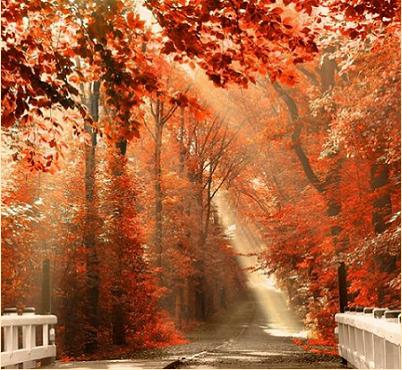 autunno pilloline