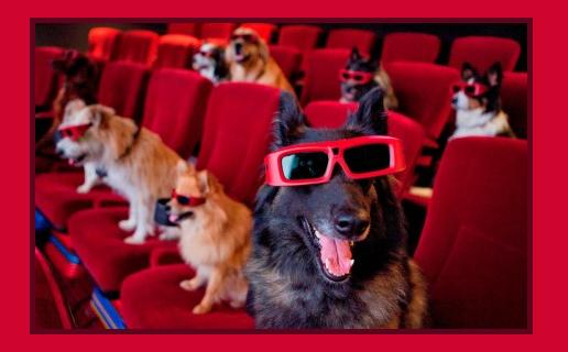 Cinema quiz: indovina qual è il film!