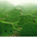 Goqui Island: il villaggio con le case coperte di edera e muschio