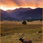Le sfumature e i colori dell'autunno in Colorado