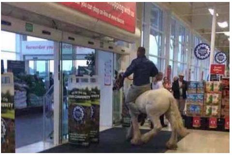 Va a fare spesa al supermercato col cavallo