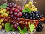 dieta di uva
