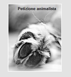 Ho bisogno di te – petizione animalista
