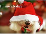Natale con Prosdocimi - umorismo e comicità sulla festa più amata