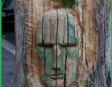 Giovane artista incide tronchi e gli alberi morti tornano a vivere