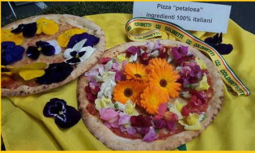 Sfornata a Modena la prima pizza petalosa al 100%