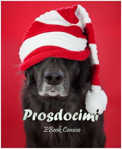 Le Avventure di Prosdocimi, ebook comico