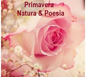 Primavera: poesie e foto sul risveglio della natura