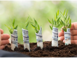Vip2Zip, la App che premia con monete green le tue scelte ecologiche