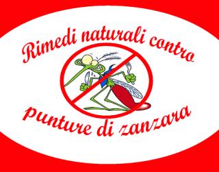 Punture di zanzare: rimedi naturali per lenire il rossore e non grattarsi