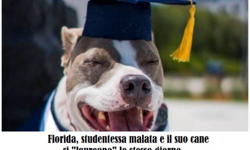USA: studentessa malata e il suo cane si laureano insieme