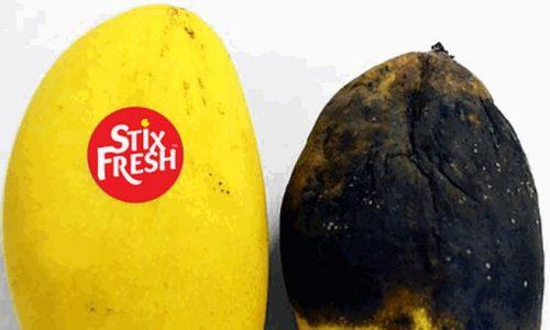 Stixfresh, l'etichetta che mantiene fresca la verdura