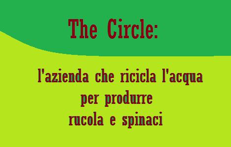 Azienda romana ricicla acqua per produrre rucola e spinaci di qualità