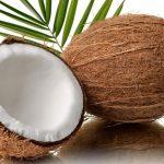 Noce di cocco: istruzioni per l'uso