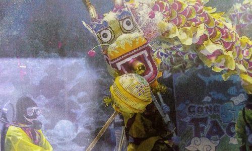 Capodanno cinese: ecco la danza del drago in acquario