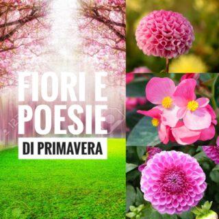 Primavera, fiori e Poesie