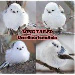 Long tailed, i piccoli uccelli giapponesi simili a batuffoli di cotone volanti